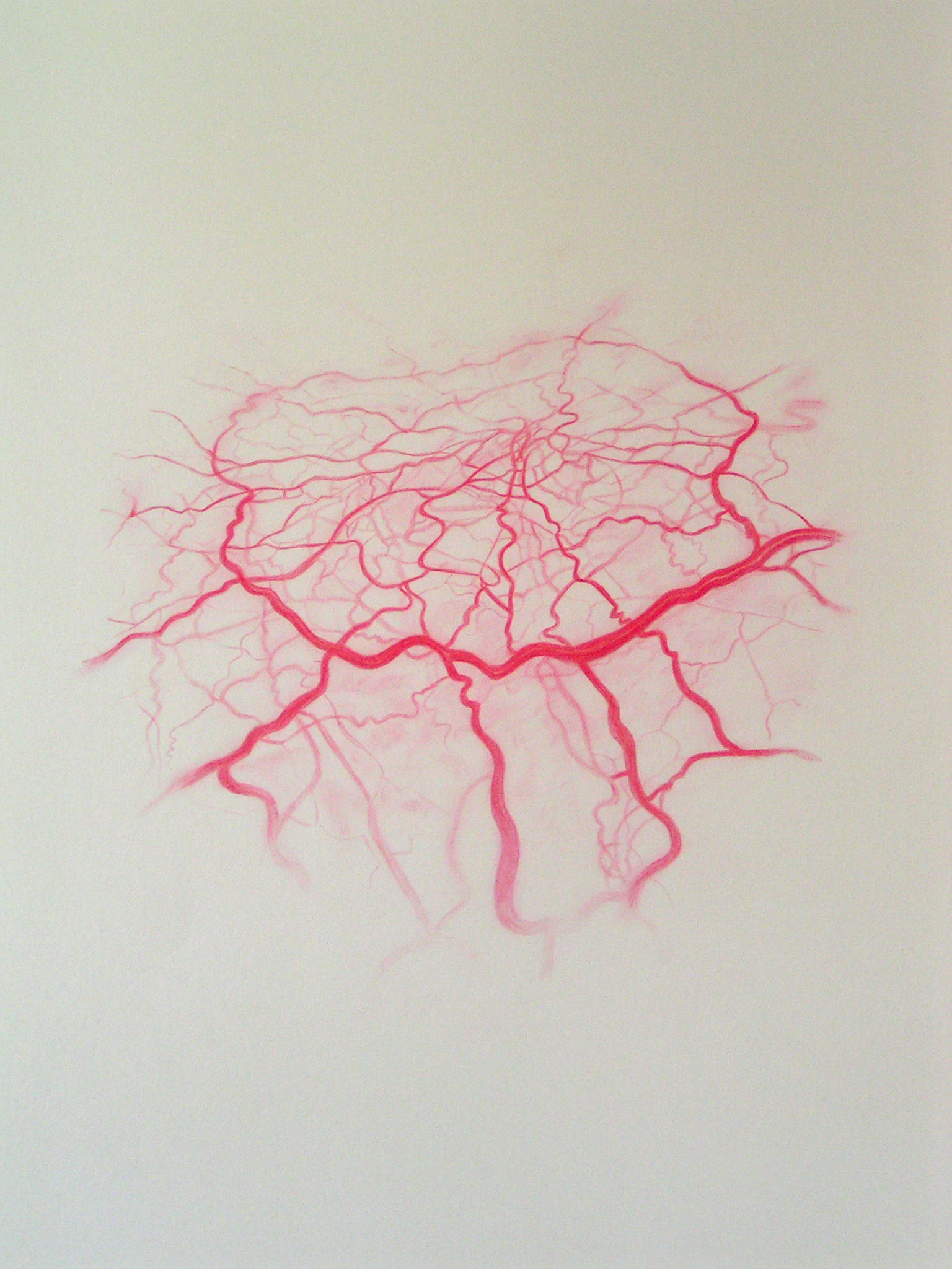 Emma J Williams 'Untitled Red Drawing No.11' 2008 pencil on paper