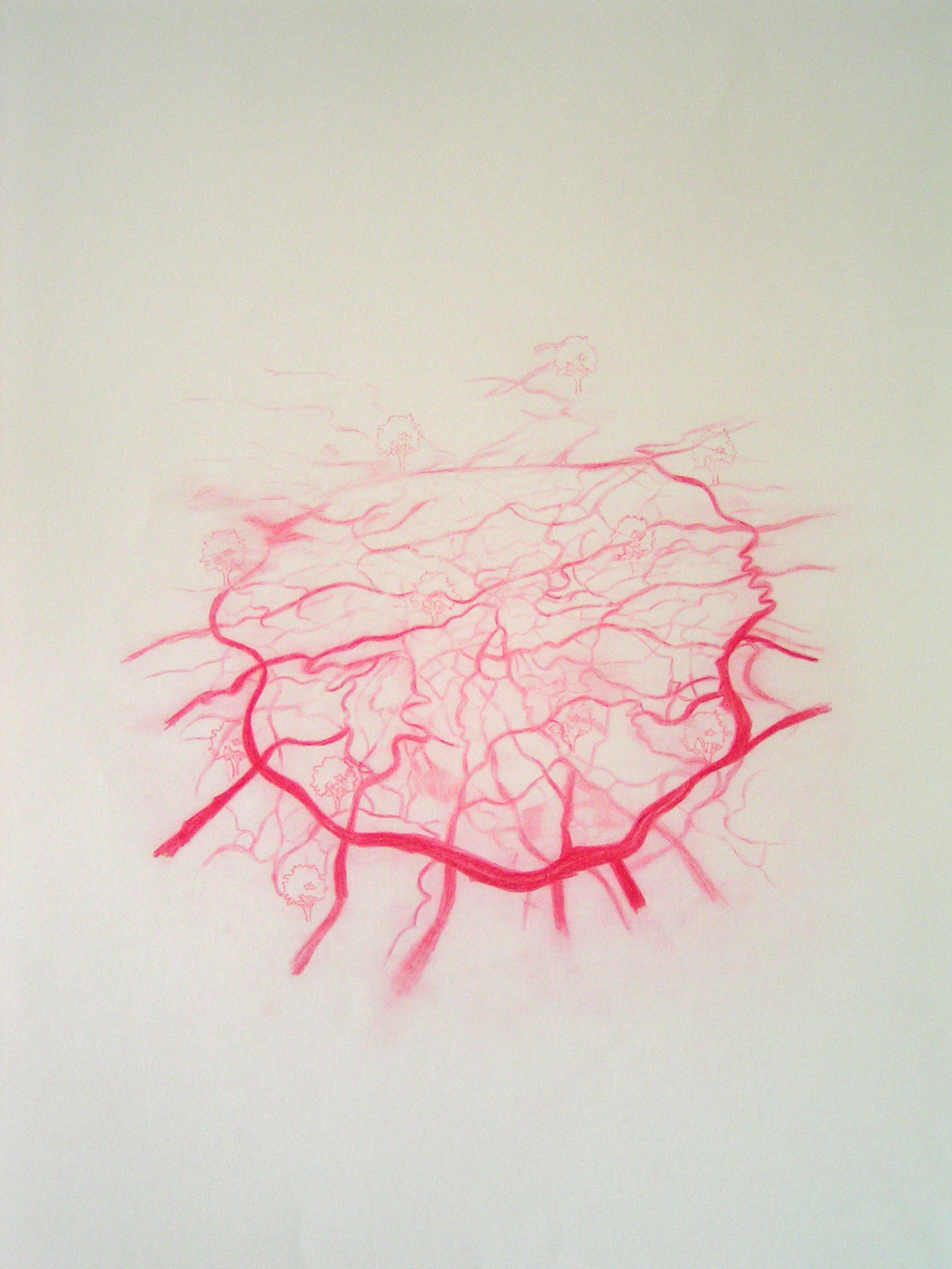 Emma J Williams 'Untitled Red Drawing No.2' pencil on paper