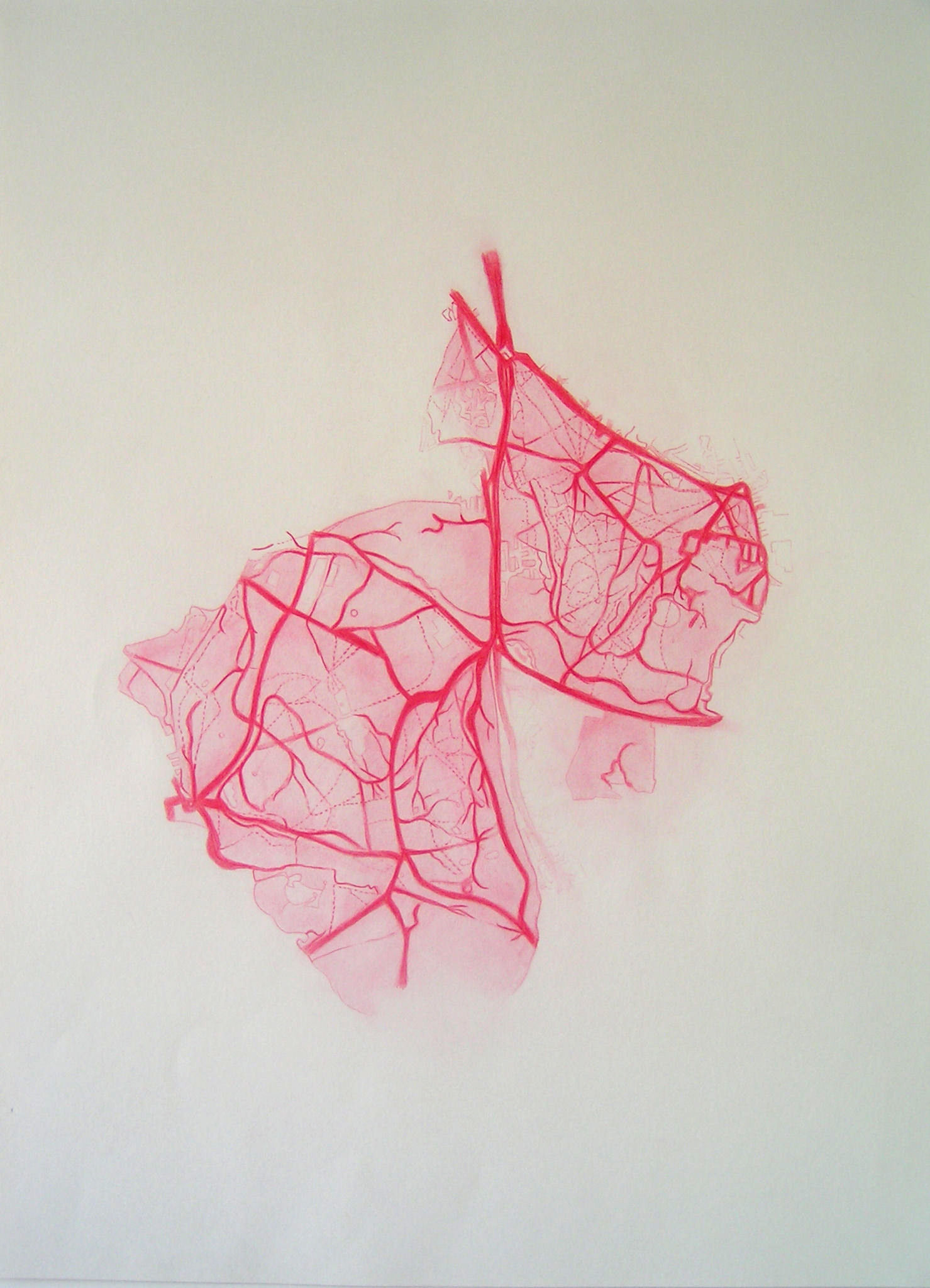 Emma J Williams 'Untitled Red Drawing No.1' pencil on paper